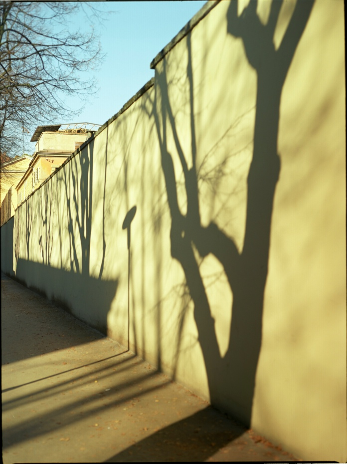 shadowy wall